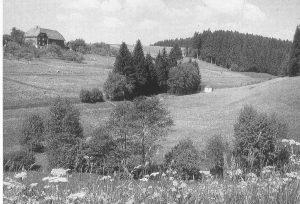 Auenbachtal vor der Bewaldung mit freistehenden Brunnenhaus im Tal