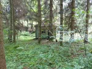 Brunnenhaus im angepflanzten Wald