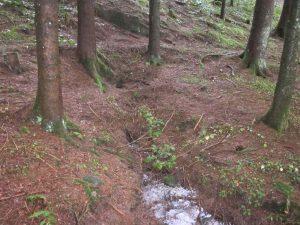 Quellauslauf des oberen, abgerissenen Talbrunnen